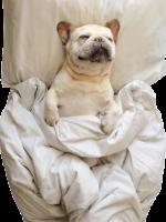 4) Nap time